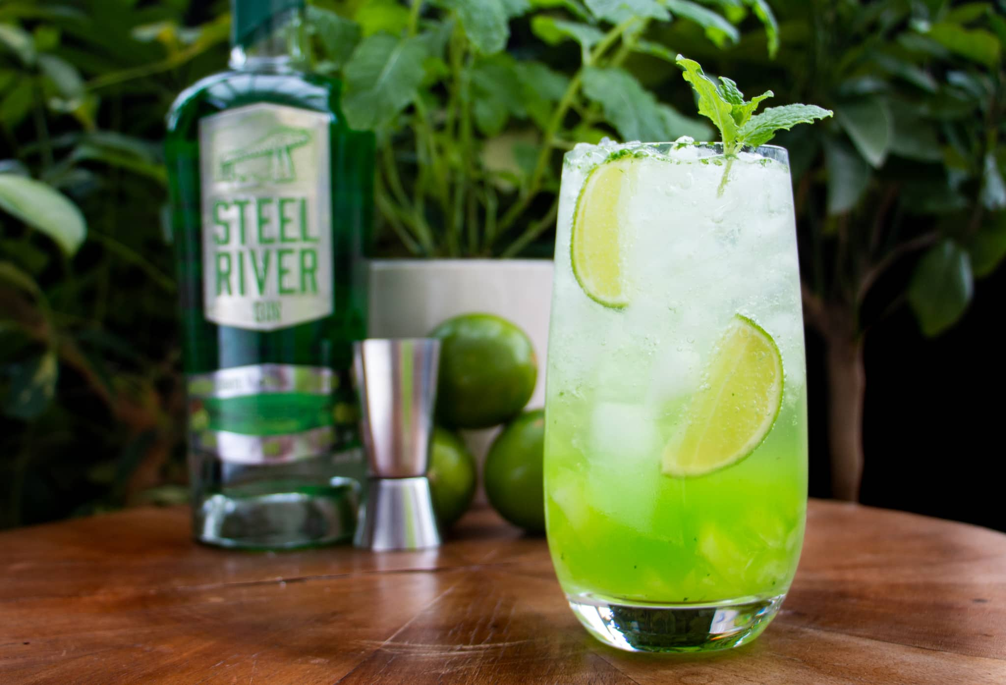 Green Mojito in Tall glass filled with Ice and lime and mint garnish. Northern Lights Gin bottle in background with limes and mint plant.