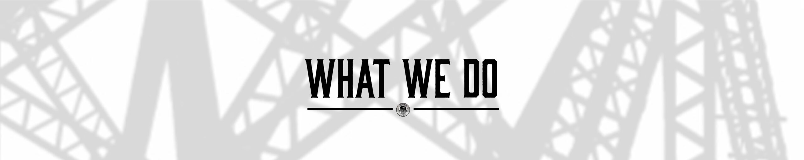 Title Banner Text: What we do